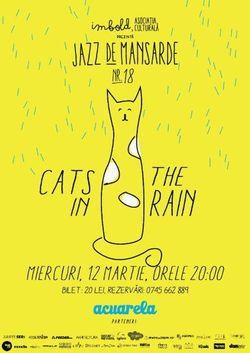 poze cats in the rain in galeria imbold