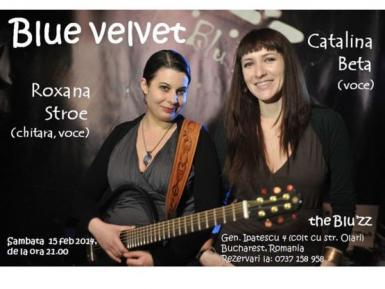 poze concert blue velvet in the blu zz club
