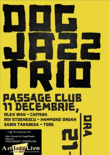 poze concert dog jazz trio in passage club