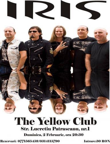 Concert Iris Yellow Club
