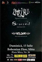 poze concert white walls scarred si wilder in sibiu