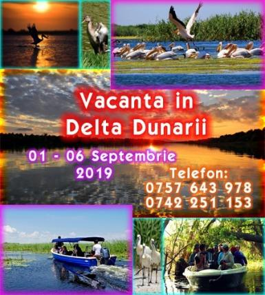 poze delta dunarii 01 06 septembrie 2019 natura liniste distractie
