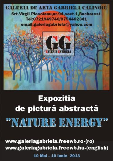 poze expozita de pictura abstracta nature energy