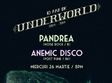 concert pandrea si anemic disco in club underworld