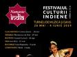 festivalul namaste india la cluj napoca