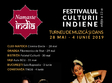 festivalul namaste india la oradea