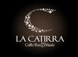 la catirra combinatia ideala intre caffe tea music