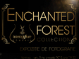 lansare enchanted forest
