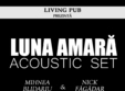 mihnea nick luna amara acoustic set