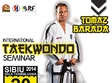 stagiul interna ional de taekwon do sibiu 2014