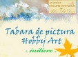 tabara de pictura hobby art initiere adulti