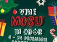 Bucuresti, Miercuri 5 Decembrie - Miercuri 19 Decembrie, TARGUL DE CRACIUN VINE MOSU IN OBOR,PARCUL OBOR,04-24 DECEMBRIE
