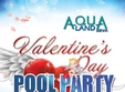 valentine s day big love pool party