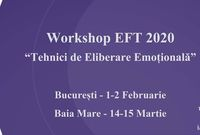 baia mare workshop tehnici de eliberare emotionala eft